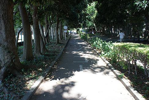 十条中央公園