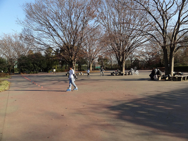小金井公園 スケート場