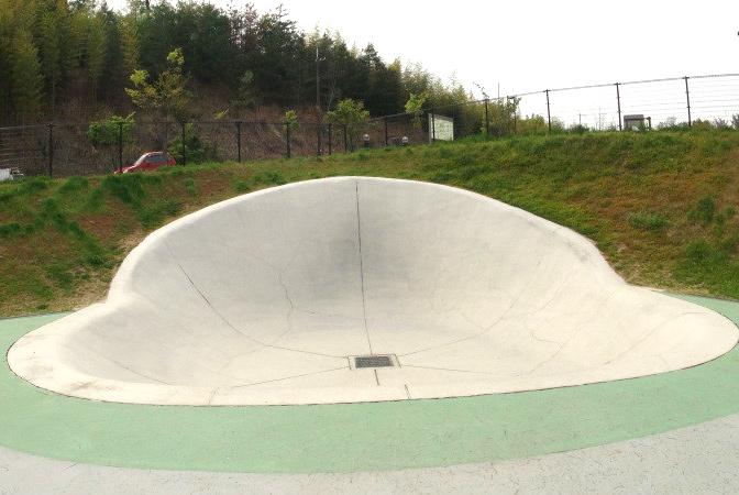 田辺公園スケートパーク