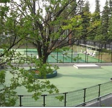 世田谷公園SLパーク