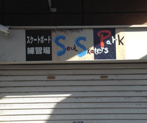 SoulSkaters park