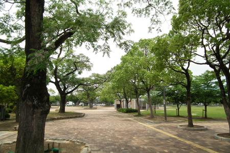 末広中央公園