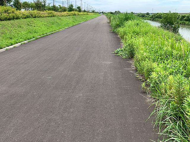 増田川河川敷